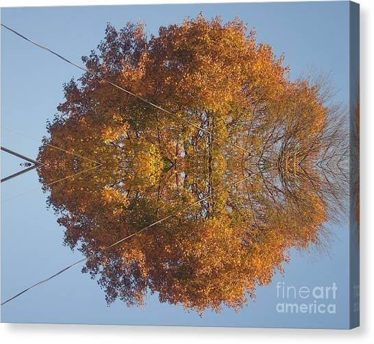 Nature Unleashed Canvas Print