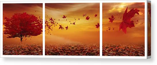 Maple Trees Canvas Print - Nature's Art by Lourry Legarde