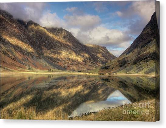 Nature's Design Canvas Print