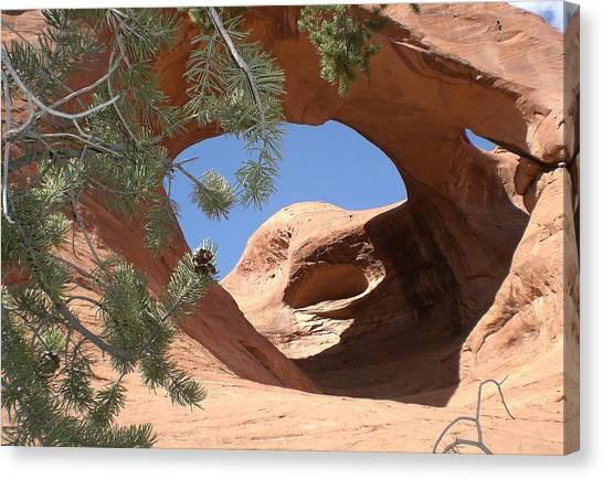 Natures Eye Canvas Print by Fred Wilson