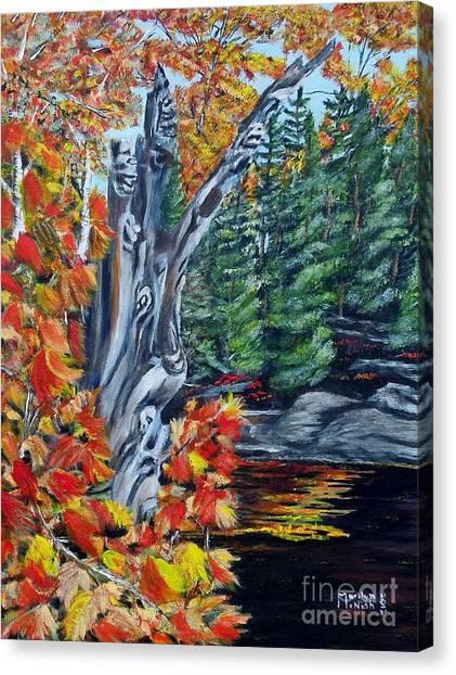 Natures Faces Canvas Print