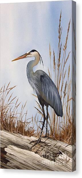 Nature's Gentle Beauty Canvas Print