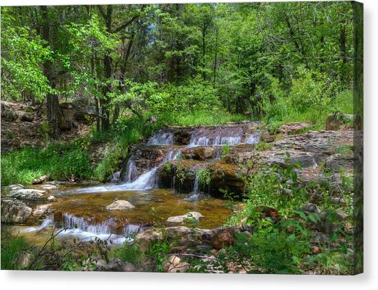 Brown Ranch Trail Canvas Print - Natures Gift by Thomas  Todd