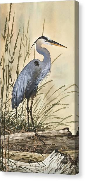 Nature's Harmony Canvas Print