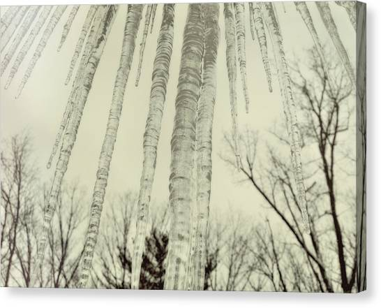 Nature's Ice Pop Canvas Print by JAMART Photography