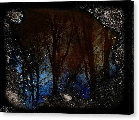 Natures Looking Glass 2 Canvas Print