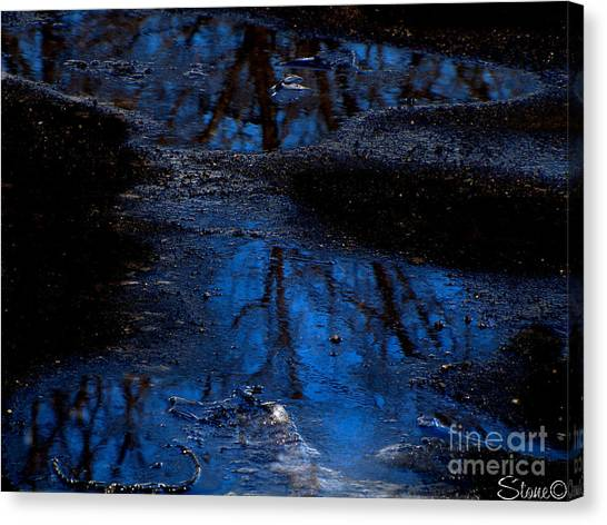 Natures Looking Glass Canvas Print