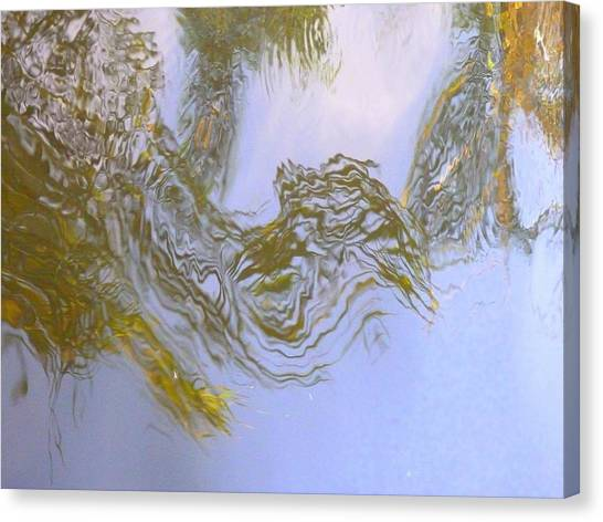 Natures Mirror Canvas Print by Florene Welebny