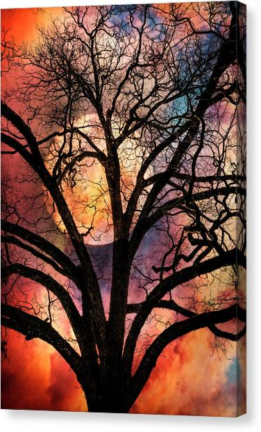 Tropical Stain Glass Canvas Print - Nature's Stained Glass by Debra and Dave Vanderlaan
