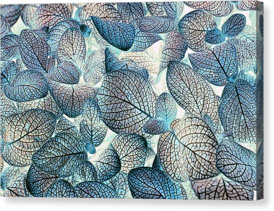 Nature's Tracery Canvas Print