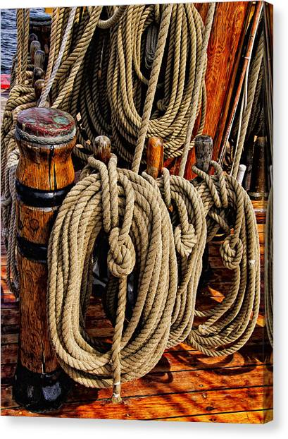 Nautical Knots 17 Oil Canvas Print