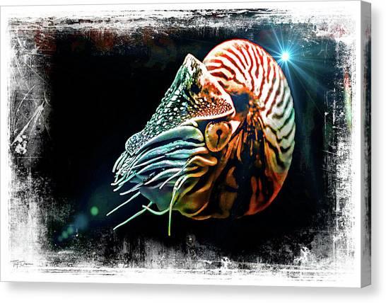 Nautilus Dreams Canvas Print