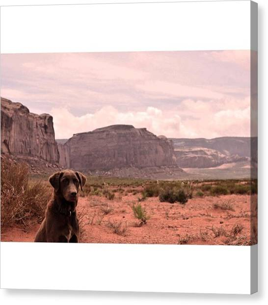 Scotty Canvas Print - Navajo Mutt #photography #landscape by Scotty Brown
