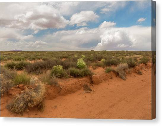 Navajo Reservation Canvas Print