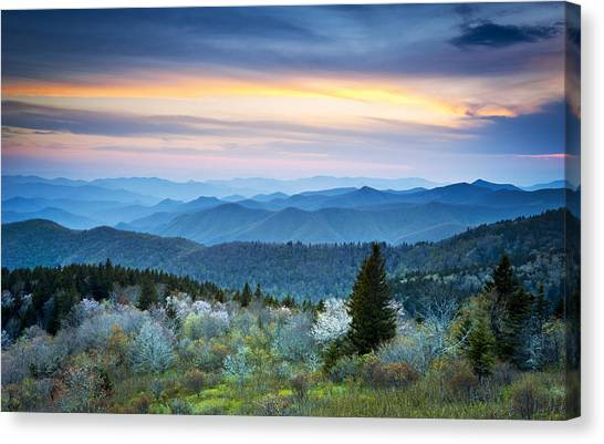 Nc Blue Ridge Parkway Landscape In Spring - Blue Hour Blossoms Canvas Print