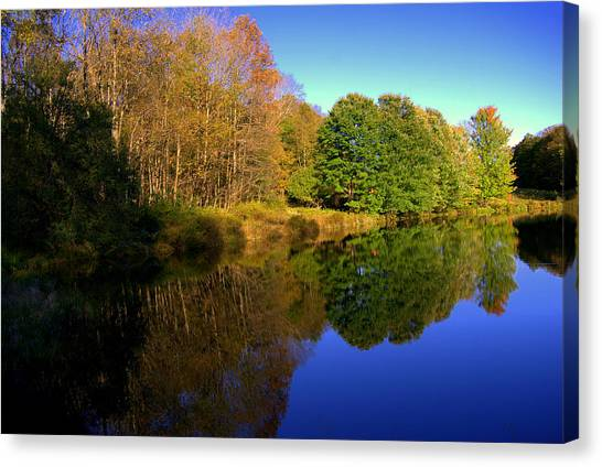 Near To Monticello Ny Canvas Print