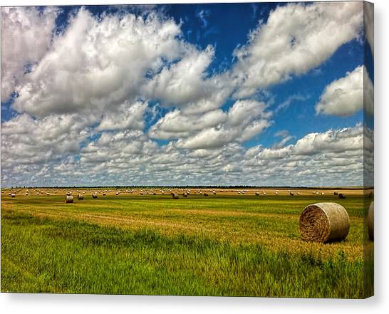 Nebraska Wheat Fields Canvas Print