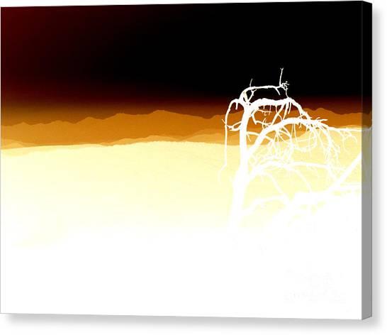 Negset Canvas Print by Lionel Martinez