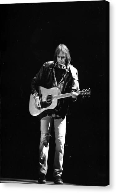 Neil Young Canvas Print - Neil Young by Wayne Doyle