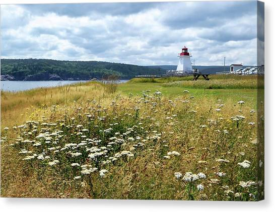 Cabot Trail Canvas Print - Neil's Harbor Lighthouse by Debbie Hart