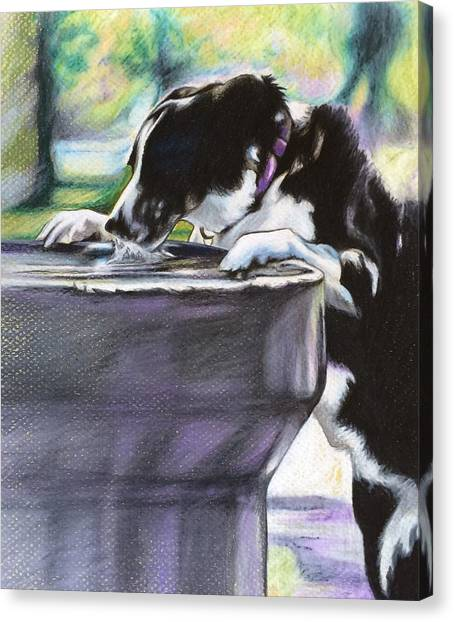 Nellie Canvas Print by Carol Meckling
