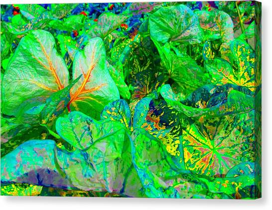 Canvas Print featuring the photograph Neon Garden Fantasy 1 by Marianne Dow