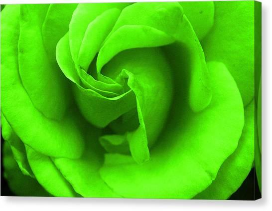 Neon Green Rose Canvas Print
