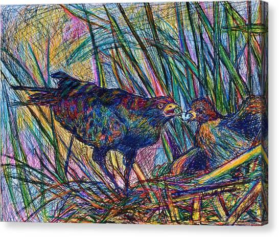 Brown Towhee Canvas Print - Nesting by Kendall Kessler