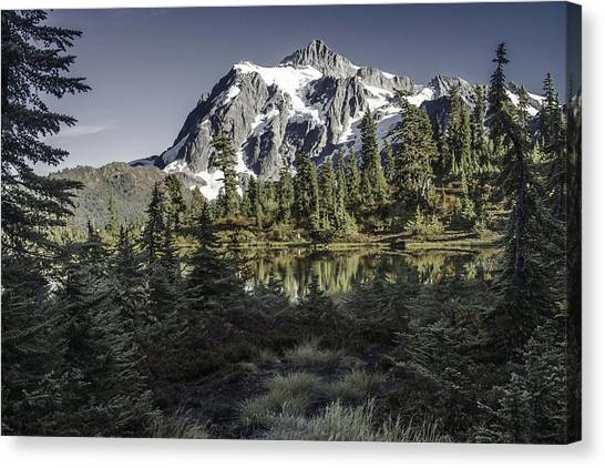 Nestled Canvas Print