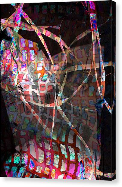 Net Canvas Print by Dave Kwinter