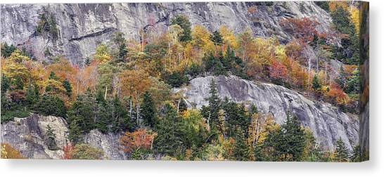 New England Foliage Burst Canvas Print by Expressive Landscapes Fine Art Photography by Thom