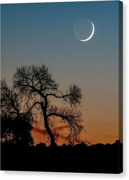 New Moon At Beaver Creek, Arizona, I Canvas Print by Dave Wilson