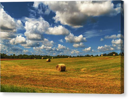 Canvas Print featuring the photograph New Mowed Hay  by Barry Jones