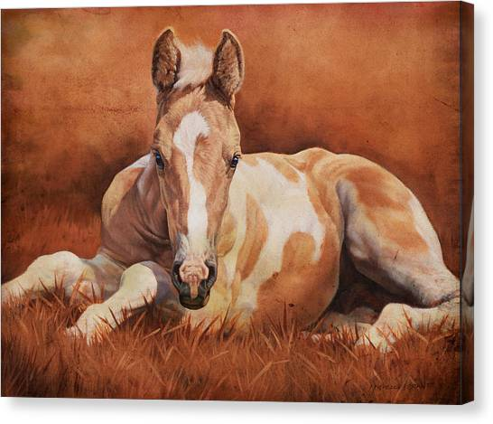 Horse Farms Canvas Print - New Paint by JQ Licensing