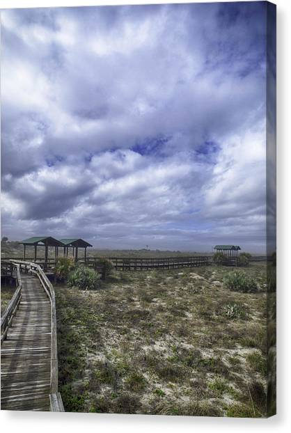 New Smyrna Beach Dunes Canvas Print