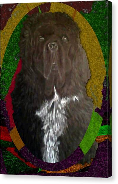 Canvas Print featuring the drawing Newfie Colors by Michelle Audas