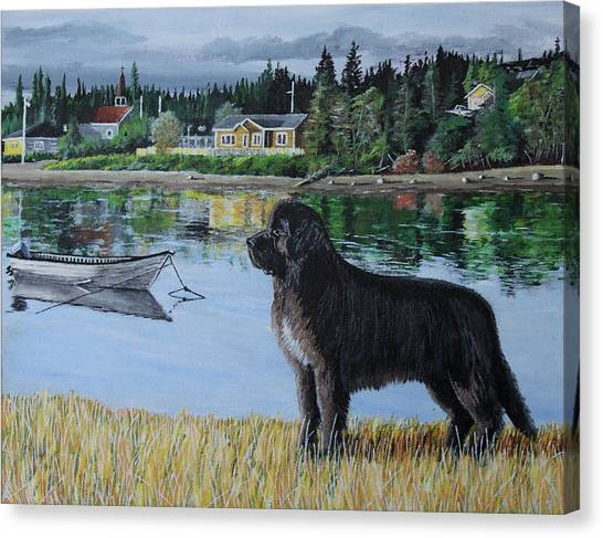 Newfoundland In Labrador Canvas Print
