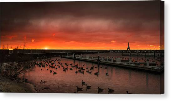 Newport Geese Canvas Print