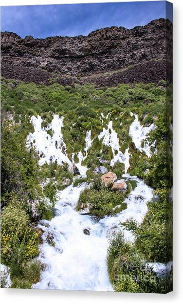 Niagra Springs Idaho Journey Landscape Photography By Kaylyn Franks  Canvas Print