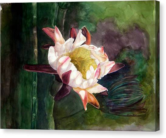 Night Blooming Cereus Canvas Print