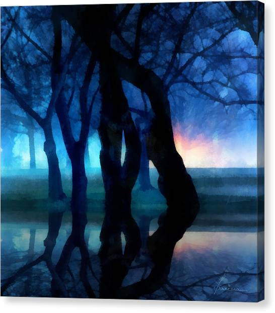 Night Fog In A City Park Canvas Print