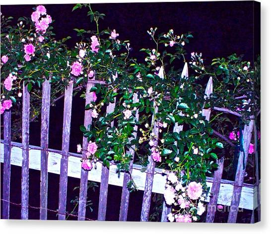 Night Gate Canvas Print by Chuck Taylor