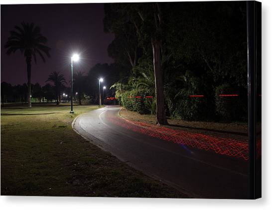 Canvas Print featuring the photograph Night In The Park by Dubi Roman