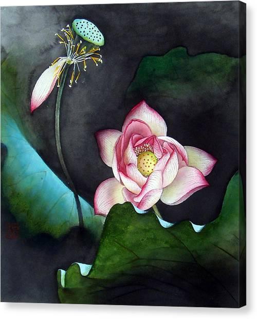Night Lotus Canvas Print by Leaf Moore