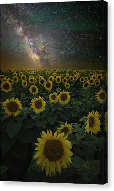 Night Of A Billion Suns Canvas Print