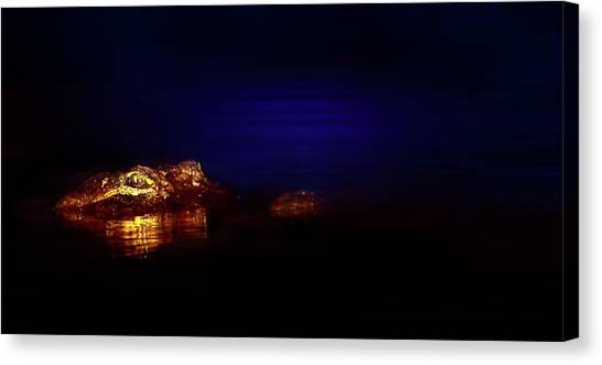 University Of Florida Canvas Print - Night Of The Hunter by Mark Andrew Thomas