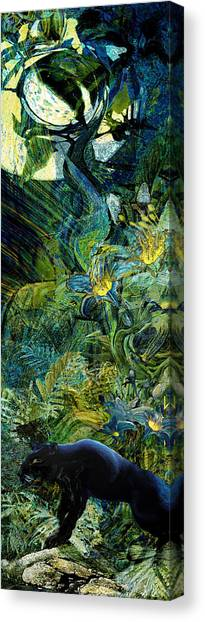 Night Of The Panther Canvas Print by Anne Weirich
