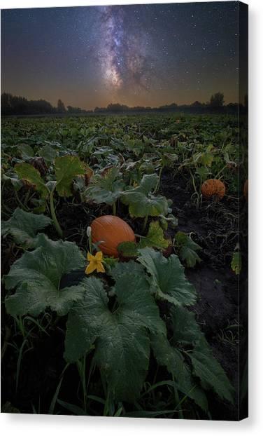 Pumpkin Patch Canvas Print - Night Of The Pumpkin by Aaron J Groen