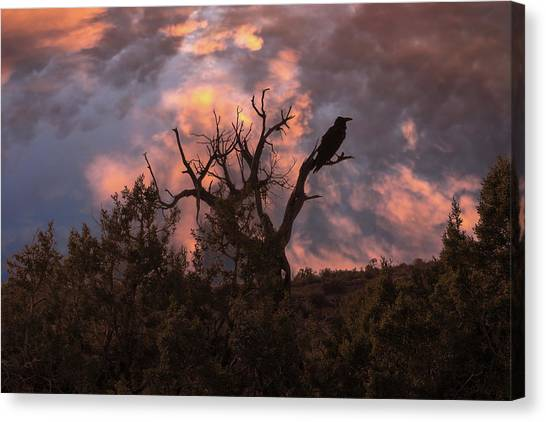 Night Of The Raven Canvas Print