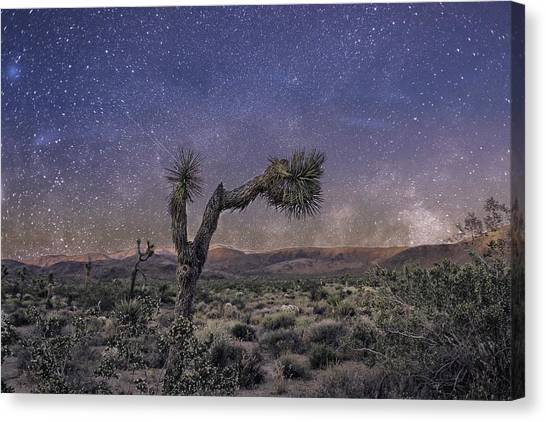 Canvas Print featuring the photograph Night Sky by Alison Frank